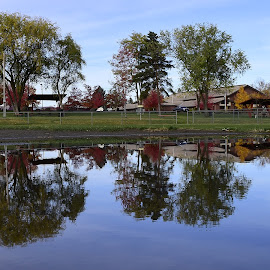 Reflection on the water. by Denton Thaves - City,  Street & Park  Vistas ( water, reflections )