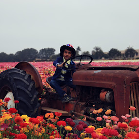 by Kaushik Bera - Flowers Flower Gardens (  )