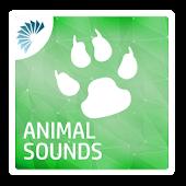 Download Animal Sounds Ringtones APK to PC