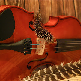 by D.M. Russ - Artistic Objects Musical Instruments