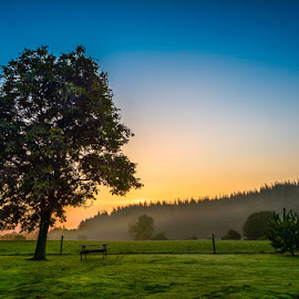 Daybreak by Brian Noel - Landscapes Prairies, Meadows & Fields ( relax, tranquil, relaxing, tranquility )