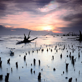 Kelanang's Story - Weird Sky with Scattered Foreground by Syafiqjay  Sj - Landscapes Waterscapes