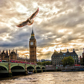 London by Joshua Malcolm  - Instagram & Mobile iPhone