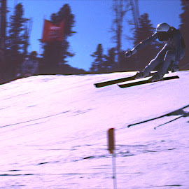 Fast Air by Bill Coan - Sports & Fitness Snow Sports ( skiing, cold, speed, downhill, snow, sports, race, skier )