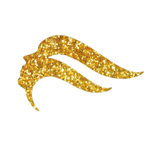 Faces Unisex Saloon, Indirapuram, Indirapuram logo