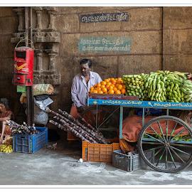 The fruit seller by Elaine Springford - Food & Drink Fruits & Vegetables