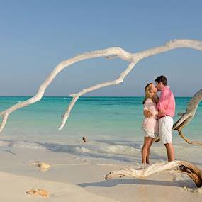Paradise Drift Wood by Andrew Morgan - Wedding Bride & Groom ( love, kiss, zanzibar, beachwedding, wedding, destinationwedding, sea, beach, travel, paradise, africa, island )