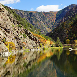 Black Canyon of the Gunnison by Debbie Allen - Landscapes Mountains & Hills ( water, mountains, fall, trees, scenery )