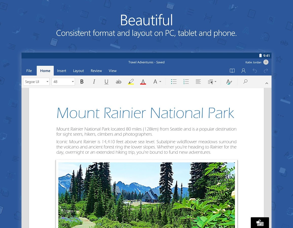Microsoft Word Screenshot 5