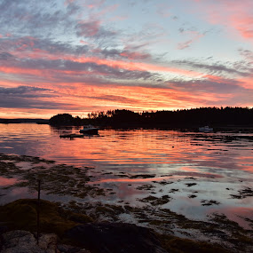 Harpswell Morning by Joe Fazio - Landscapes Sunsets & Sunrises ( maine, sunrise, cundys harbor, lobster, harpswell, new meadows river, boat, coastal )