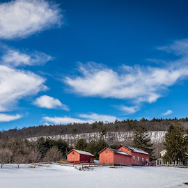 Catskill Farm by Bob Ricketson - Buildings & Architecture Other Exteriors ( greene county, winter, february, catskills, sunny, snow, hudson valley, wandering, landscape )