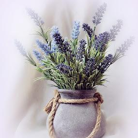 by Ksenija Glavak - Flowers Flower Arangements