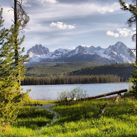 Sawtooths by Dave Bower - Landscapes Mountains & Hills