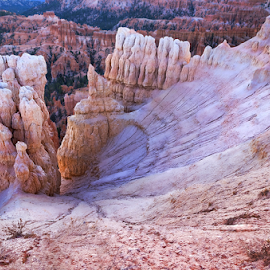 Bryce Canyon Hoodoos by Phyllis Plotkin - Landscapes Caves & Formations ( rock formations, utah, brye canyon, hoodoos, landscape )