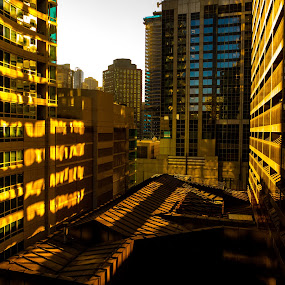 Endless rooftops from my Hotel... by Bob Stafford - Buildings & Architecture Office Buildings & Hotels ( roof, complex, warm, shadow, vista, buildings, windows, chicago, morning, sun )