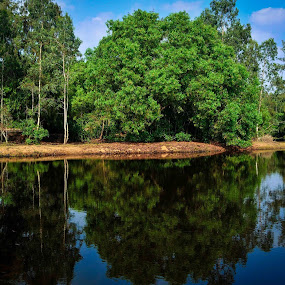 A reflection of Heaven!!! by Prasant Kumar - Landscapes Forests ( water, reflection, sky, nature, plants, pwcreflections, landscape )