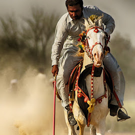 Nukra by Abdul Rehman - Sports & Fitness Other Sports ( sand, natural light, horse, angry, dangerous, horseback, rally, pakistan, adventure, multan, thrilling, dangerous sport, dust, sun light )