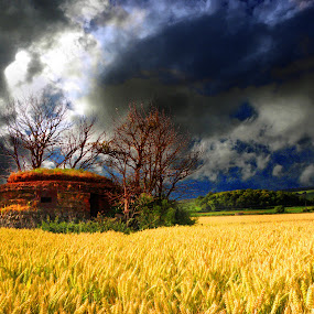 pillbox by Paul Scullion - Landscapes Prairies, Meadows & Fields ( , hdr, garyfonglandscapes, holiday photo contest, photocontest )