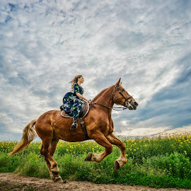 Winged by Laura Stoica - Animals Horses ( sky, girl, horse, road, spring )