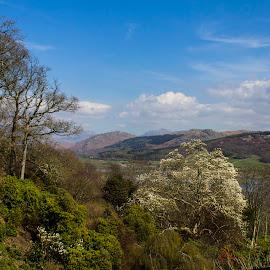 Lake District by Bev Harrison - Landscapes Mountains & Hills ( lake district )