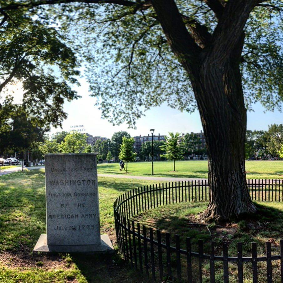 UNDER THIS TREEWASHINGTONFIRST TOOK COMMANDOF THEAMERICAN ARMYJULY 3, 1775  Submitted by@RNewengland