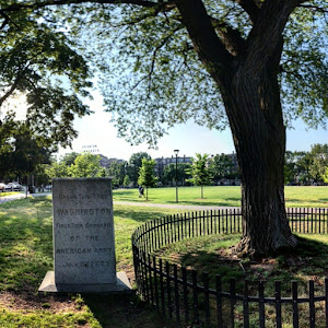 UNDER THIS TREE WASHINGTON FIRST TOOK COMMAND OF THE AMERICAN ARMY JULY 3, 1775   Submitted by @RNewengland