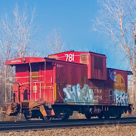 Maybe One Of The Last. by Larry Bodinson - Transportation Trains ( red caboose, caboose, train car, train, caboose with graffiti,  )