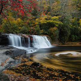 Whirlpool by Snickers Oakes - Landscapes Waterscapes ( hooker falls, nature, nc, waterfall, dupont state park, whirlpool )