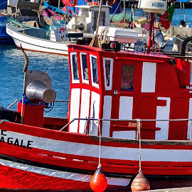 Fishing boat - Portugal by Rick Pelletier - Novices Only Objects & Still Life