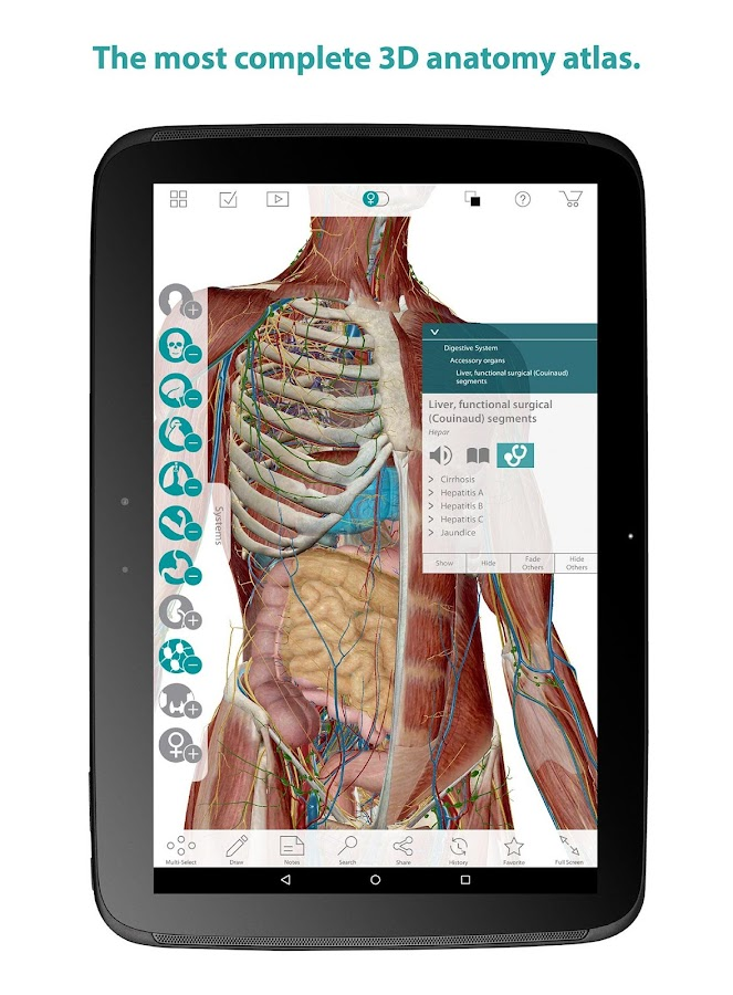 Human Anatomy Atlas Screenshot 5
