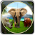 African Wildlife Animal Hunter file APK Free for PC, smart TV Download