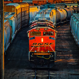 by Ron Meyers - Transportation Trains