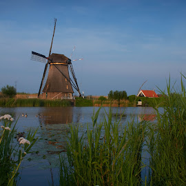 Windmill by Nico Kranenburg - Landscapes Waterscapes ( water, kinderdijk, holland, windmill, river )