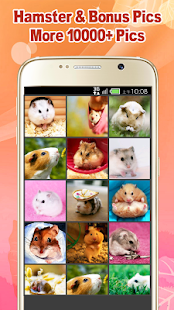 Cute Hamster Wallpapers - screenshot