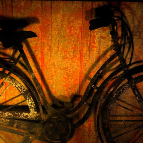 Lady bike by Steve Cooper - Artistic Objects Other Objects ( bike, classic photo, vehicle, pedal power, bicycle )