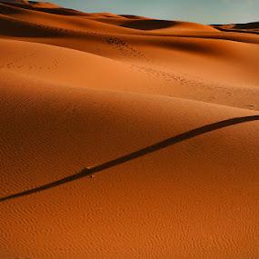 Shadow by Cvetka Zavernik - Landscapes Waterscapes ( sand, dunes, desert, native, shadow )