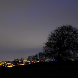 Overlooking the City by DJ Cockburn - Landscapes Forests ( england, forest, britain, worcestershire, city, countryside, dusk, night, tree, hagley, twilight, halesowen, west midlands, hagley park, field, hagley wood, black country, uk, wood, evening, pasture, landscape, lights )