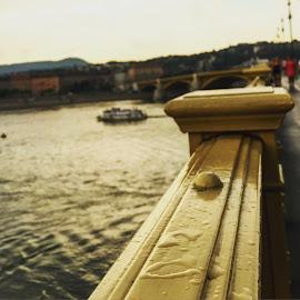 Margaret-bridge by Lilla Marosan - Instagram & Mobile iPhone