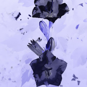 Bells by Delia Galhotra - Digital Art Abstract ( abstract, digiphotography, nature, purple, bells )