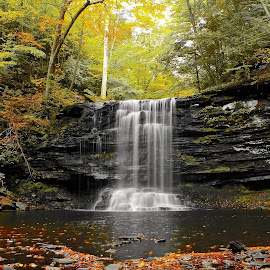 Ricketts Glen State Park by Tony Bendele - Landscapes Waterscapes ( water, waterfalls, fall colors, waterfall, beautiful, landscape, amazing, tree, nature, outdoors, fall, weather, landscapes )
