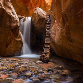 One Way In One Way Out by Mike Lindberg - Landscapes Deserts ( ladder, slot canyon, stream, utah, waterfall, creek, sandstone, long exposure, glow, southern utah )