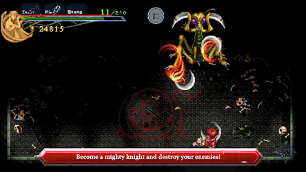 Ys Chronicles 1 v1.0.6 APK 4