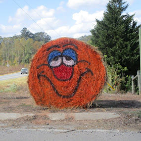 Hay Smile by David Jarrard - Artistic Objects Other Objects ( mountains, scenes, hay, artistic designs, halloween )