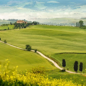 the way home by Lorenzo Moggi - Landscapes Prairies, Meadows & Fields