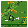 Ammar Bail - Bano Qudsia - Offline Urdu Novel