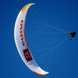 Paragliding by Thor Erik Dullum - Sports & Fitness Other Sports ( paraglider, sports )