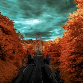 Gate 2 by Nigel Bullers - Abstract Light Painting ( ir, sky, trees, bridge, surreal )