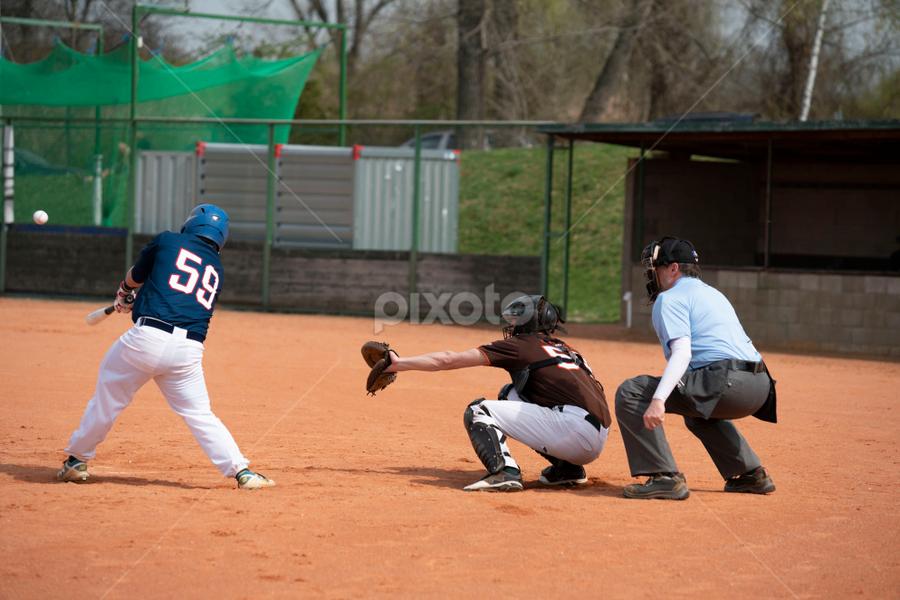 Baseball team by Vladimir Gergel - Sports & Fitness Baseball