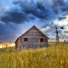 Sunset on the Homestead by Jenny Batt - Landscapes Prairies, Meadows & Fields ( ranch, sunset, prairie, rustic, windmill )
