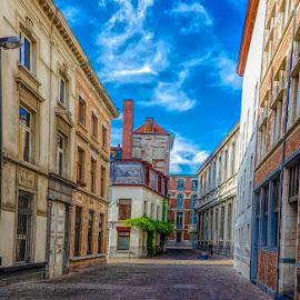 Street in Antwerp by Pravine Chester - City,  Street & Park  Neighborhoods ( places, city, street, buildings, antwerp, homes, belgium, architecture )